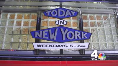 Tiny Diner 4 New York